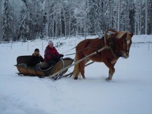 Hertsi rekiajossa jouluna 2014